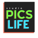 Pics-Life logo